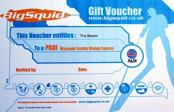 voucher-for-wordpress