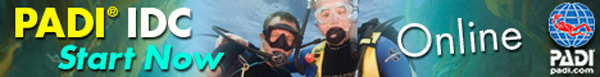 PADI eLearning Courses Instructor Development Course eLearning Bannner