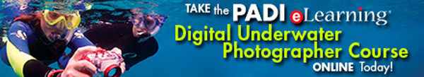PADI eLearning Courses Digital Underwater Photographer Course eLearning Banner
