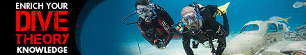 PADI eLearning Courses Dive theory eLearning Banner