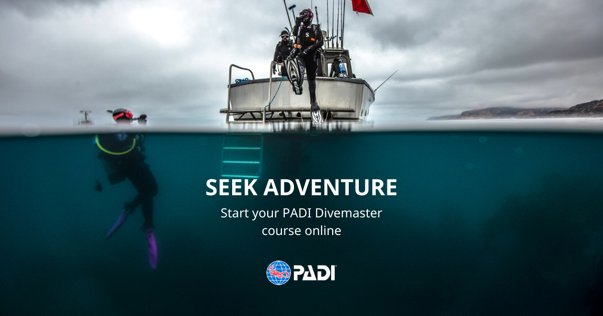 padi divemaster eLearning course banner