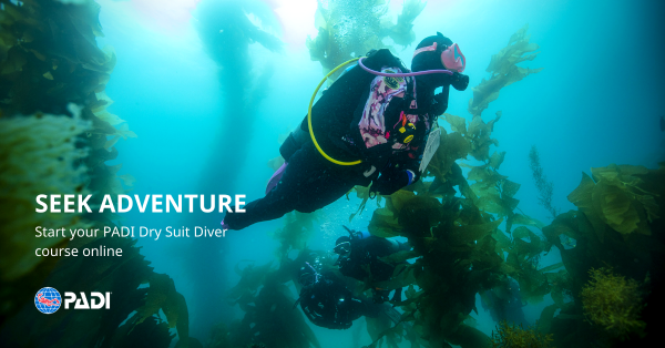 dry suit diver eLearning banner
