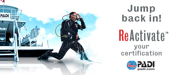 Reactivate Scuba Refresher eLearning banner